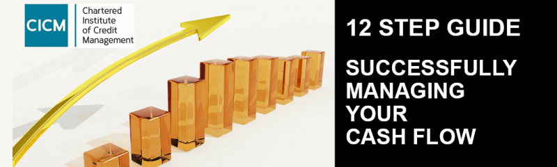 How to Successfully Manage Your Cashflow - 12 Step Guide